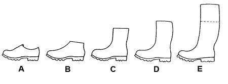 Typy obuwia